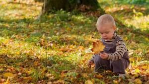 """Los niños no tienen """"estilos"""": aprenden indiscriminadamente. Foto: Outdoor Classrooms blog."""